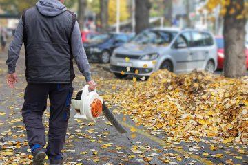 تمیز کردن بهار و پاییز
